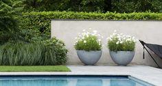 jaap sterk landschapstuin / tuin, eenvoud