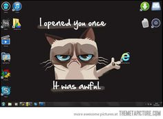This should be my new desktop background.  I would make an IE icon JUST for this reason.