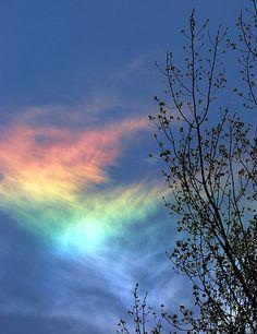 Circumhorizontal arc rainbow