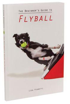 23 best flyball images border collie border collies dog stuff rh pinterest com