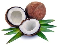 Coconut Milk Powder, Mushroom Powders, extracts, etc. from Z Natural Foods