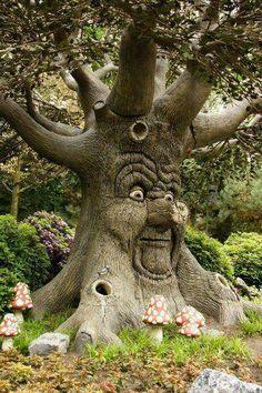 old moss woman's secret garden - Bing Images