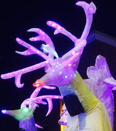 NWSI - Stilt Walkers & Carnival Puppets | Newcastle| North East| UK