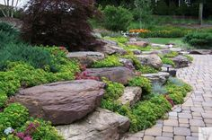 Stone outcropping, Sedum groundcover, and brick pavers.  Installed by Blue Ridge Landscaping
