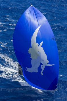 fantastic spinnaker - rolex swan cup caribbean 2015