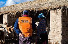 Este articulo es del sitio de WSPA, un organización que ayuda a los animales en peligro de extinción.  Este articulo describe un proyecto, con FAO, que construye 70 albergues para proteger a los ovejas, llamas y alpacas de los cambios climáticos.  Ayuda más de 50.000 animales con medicinas, y atención veterinaria en el proyecto también.