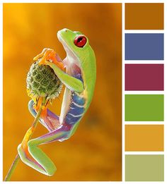 Inspirational color board