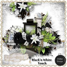 Black 'n White touch by Didine Designs  http://www.digiscrapbooking.ch/shop/index.php?main_page=index=22_175