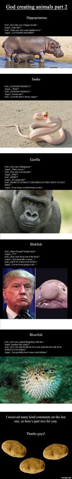 God creating Animals Part 2