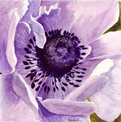 This is about original watercolor paintings of varied subject matter, and children's book illustrations Purple Poppies, Purple Art, Purple Painting, Watercolor Flowers, Watercolor Paintings, Watercolor Ideas, Watercolours, Color Lavanda, Picture Tattoos