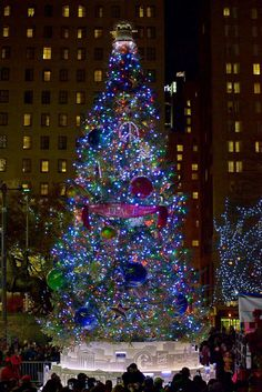 More than 2,000 lights shine on the city's official holiday tree at Dilworth Park in downtown Philadelphia.