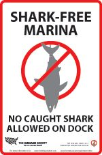 The Shark-Free Marina Initiative has a singular purpose, to reduce worldwide shark mortality. We encourage shark conservation at sport fishing and resort marinas by prohibiting the landing of any shark at the participating marina.