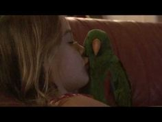 Adorable Baby Eclectus Chatter