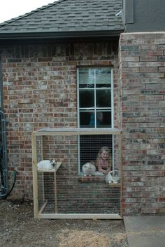 I came across this wonderful post last week and immediately forwarded it to my hubby at work...at last, proof that you can add a safe outdoor area for cats that isn't a complete eyesore! I have been badgering Jay for...