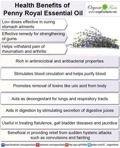 Health benefits of pennyroyal essential oil may be attributed to its properties as an anti-hysteric, anti-microbial, anti-bacterial, anti-rheumatic, anti-arthritic, antiseptic, astringent, cordial, digestive and stomachic substance.