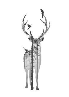 Poster bonito com cervo.