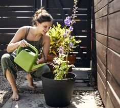 Eco-friendly and relaxation-friendly solutions