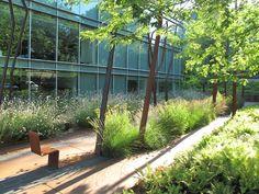 floorworks by agence ter landscape architecture 05 « Landscape Architecture Works | Landezine