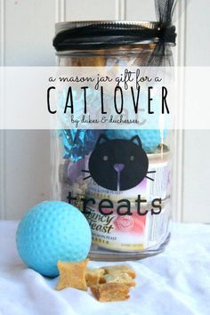 a mason jar gift for a cat lover {with homemade cat treats and a mason jar that can be reused} (Mix People Gift Ideas) Pet Gifts, Cat Lover Gifts, Craft Gifts, Cat Lovers, Food Gifts, Unique Gifts For Girls, Simple Gifts, Mason Jar Gifts, Mason Jars