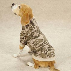 Casual Canine Digital Camo Dog Hoodie at BaxterBoo