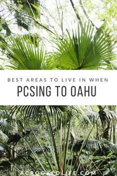Are you PCSing to Hawaii and don't know where to start looking for places to live? Well no worries because you have come to the right place! I created this post to help military families choose the best areas to live in when PCSing to Oahu. | @acrookedlife | Military Life | Best Areas To Live In When PCSing to Oahu | Oahu Living | Moving to Oahu |