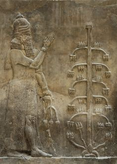 Genie with a poppy flower. Relief from the Palace of king Sargon II at Dur Sharrukin in Assyria (now Khorsabad in Iraq), 716–713 BC. Courtesy & currently located at the Louvre, France. Photo taken by Marie-Lan Nguyen.