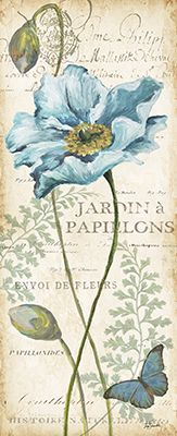 Poppies Histoire Naturelle Panel 02 of 02 Decoupage Vintage, Vintage Diy, Vintage Cards, Vintage Paper, Images Vintage, Vintage Pictures, Art Floral, Botanical Illustration, Botanical Prints