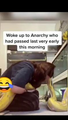 Wtf Funny, Funny Laugh, Funny Memes, Hilarious, Drawings On Lined Paper, Writing Pictures, Crazy Funny Videos, Funny Clips, Animal Memes