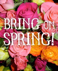 DMAZ Lifestyle Salon located in Beachwood, Ohio offers hair care and wellness services. Happy Spring Day, First Day Of Spring, Hello Spring, Spring Time, Facebook Engagement Posts, Season Quotes, Flower Words, Spring Quotes, Spring Shower