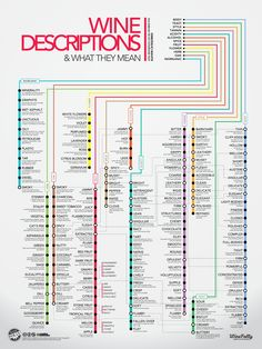 Wine Descriptors Infographic: Over 120 wine descriptions on a subway style design. Learn wine flavors and what they really mean. Art Du Vin, Wein Poster, Wine Descriptions, Wine Flavors, Chart Infographic, Infographic Posters, Wine Folly, Wine Education, Wine Guide
