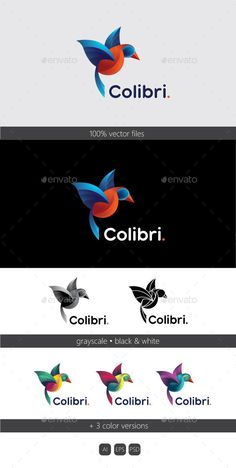 Colibri logo - Animals #Logo Templates Download here:  https://graphicriver.net/item/colibri-logo/19720834?ref=alena994