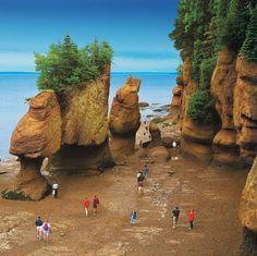 La baie de Fundy à marée basse et à marée haute