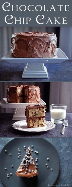 Chocolate chip cake recipe | 100th blog post! | http://loveandduckfat.com/chocolate-chip-cake-recipe-100th-blog-post/