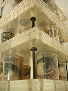 canned eyes