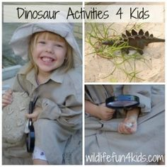 Top 10 dinosaur activities for kids by Wildlife Fun 4 Kids.