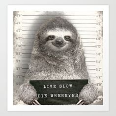 Sloth in a Mugshot Art Print