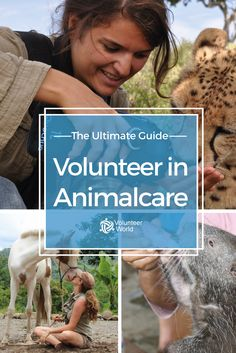 You love animals and you want to give something back? You find is fascinating to see your favorite animals in their natural habitat? Then volunteering in Animalcare is perfect for you!