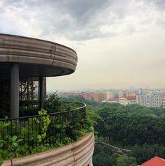 Heatherwick's HIVE #waf2015 #Singapore by maynardarchitect