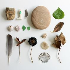 scraps of us - collections