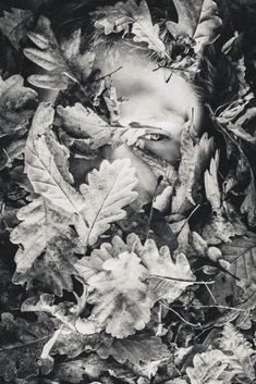 Communion #photography #blackandwhite #dark #art #artproject #real #artphotography #contrast #darkside #anonymous #hiding #manandnature #sickmindedcult #sickminded #leaves #communion #naturephotography #hide #iamnothere Photography Gallery, Nature Photography, Communion, Dark Art, Dark Side, Anonymous, Art Projects, Contrast, This Is Us
