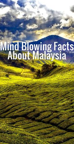12 Mind Blowing Facts About Malaysia