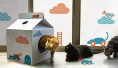 mimo e bambino: Casas e Camas de Reciclagem para seu Pet.