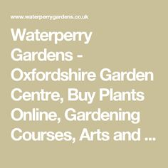 Waterperry Gardens - Oxfordshire Garden Centre, Buy Plants Online, Gardening Courses, Arts and Craft Courses - Waterperry Gardens Buy Plants Online, Great Days Out, Gardening Courses, Garden Centre, Staycation, Container Gardening, Oxford, Arts And Crafts, England