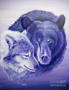 wolf and bear - Google Search