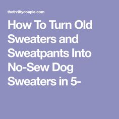 How To Turn Old Sweaters and Sweatpants Into No-Sew Dog Sweaters in 5-