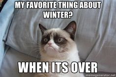 My favorite thing about winter is when it's over. Thank you Grumpy cat. Winter sucks. I hate winter.