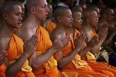 Buddhist monks medit