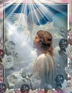 Santa María, Madre de Dios y Madre nuestra: Imágenes de Jesús