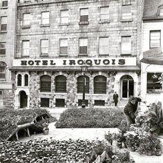 Jacques Cartier, Tumblr, Logs, Montreal, Canada, Places, 1984, Photographs, Photos