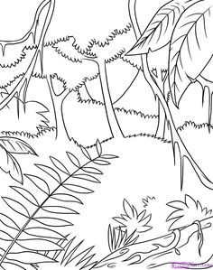 Easy To Draw Jungle Animals Coloring Sheets Page Scene